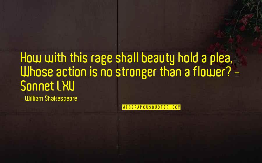 Plea Quotes By William Shakespeare: How with this rage shall beauty hold a