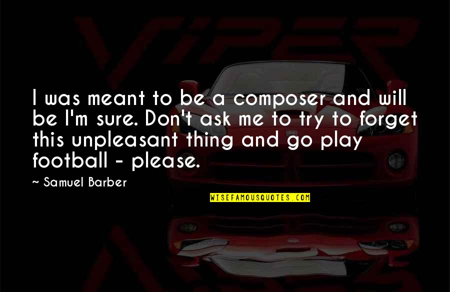 Please Don't Go Quotes By Samuel Barber: I was meant to be a composer and