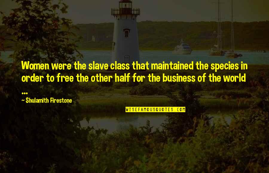 Please Forgive Me I Love You Quotes By Shulamith Firestone: Women were the slave class that maintained the