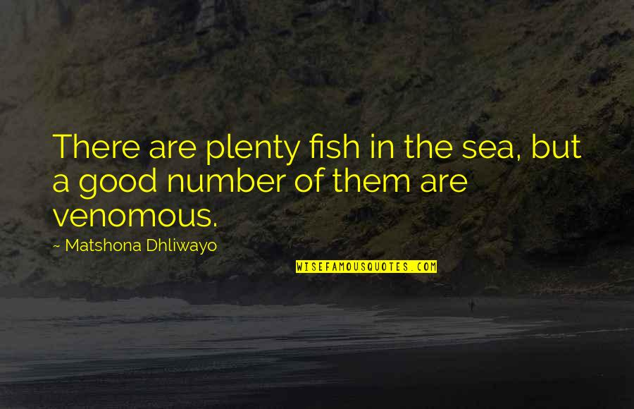 Plenty Of Other Fish In The Sea Quotes By Matshona Dhliwayo: There are plenty fish in the sea, but