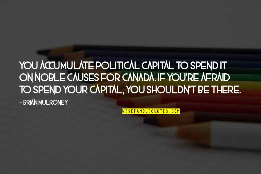 Plexiglas Quotes By Brian Mulroney: You accumulate political capital to spend it on
