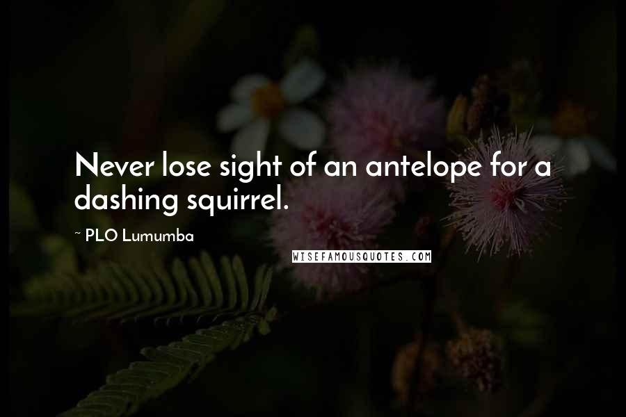 PLO Lumumba quotes: Never lose sight of an antelope for a dashing squirrel.