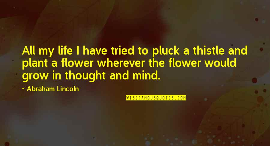 Pluck'd Quotes By Abraham Lincoln: All my life I have tried to pluck