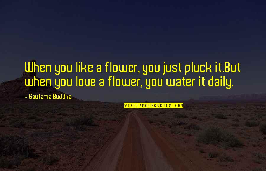 Pluck'd Quotes By Gautama Buddha: When you like a flower, you just pluck