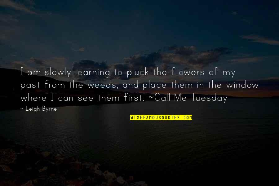 Pluck'd Quotes By Leigh Byrne: I am slowly learning to pluck the flowers