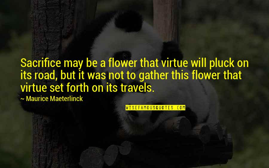Pluck'd Quotes By Maurice Maeterlinck: Sacrifice may be a flower that virtue will