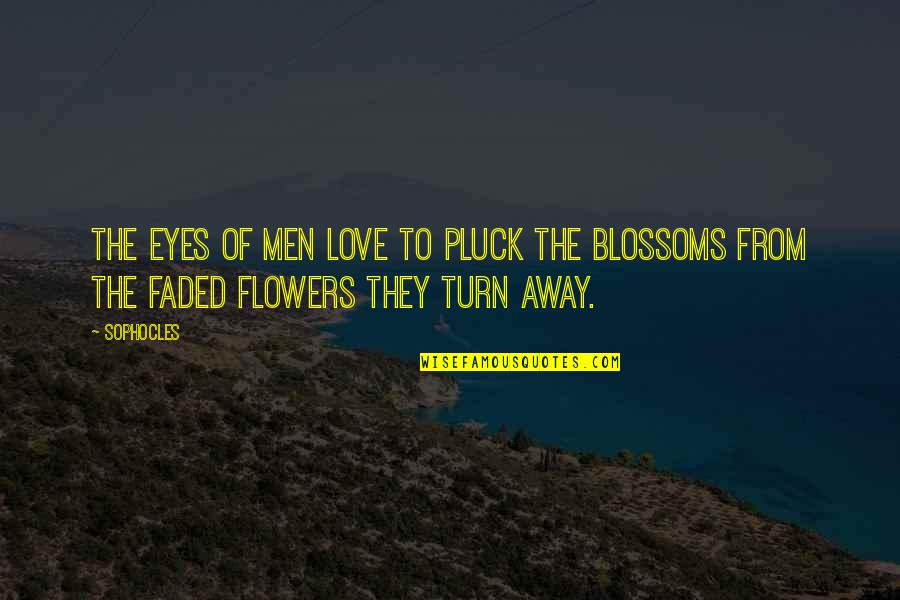 Pluck'd Quotes By Sophocles: The eyes of men love to pluck the