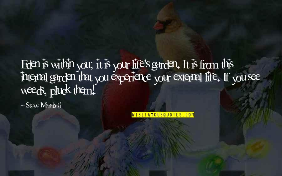 Pluck'd Quotes By Steve Maraboli: Eden is within you; it is your life's