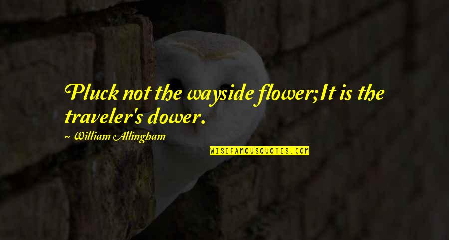 Pluck'd Quotes By William Allingham: Pluck not the wayside flower;It is the traveler's
