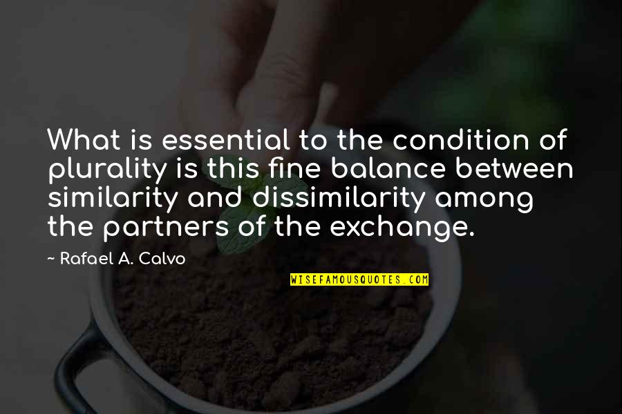 Plurality Quotes By Rafael A. Calvo: What is essential to the condition of plurality