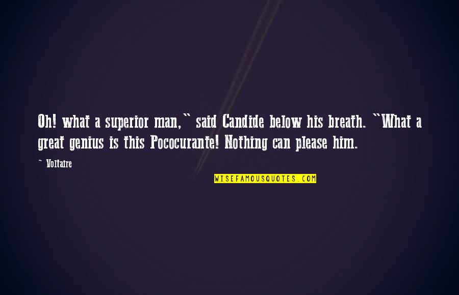 """Pococurante Quotes By Voltaire: Oh! what a superior man,"""" said Candide below"""
