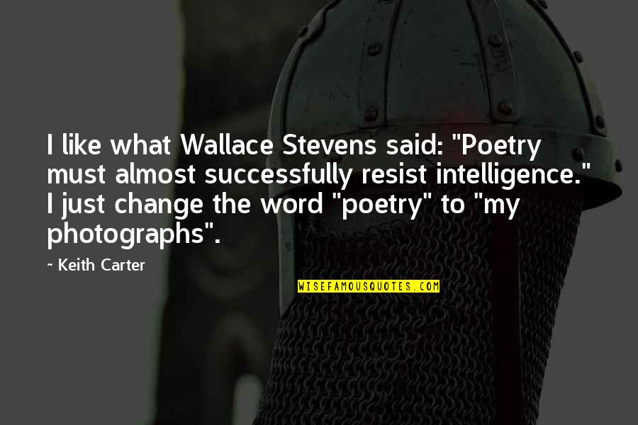 """Poetry And Photography Quotes By Keith Carter: I like what Wallace Stevens said: """"Poetry must"""