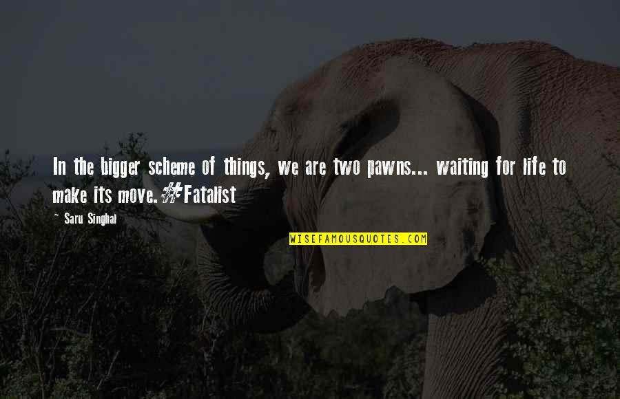 Polishes Quotes By Saru Singhal: In the bigger scheme of things, we are