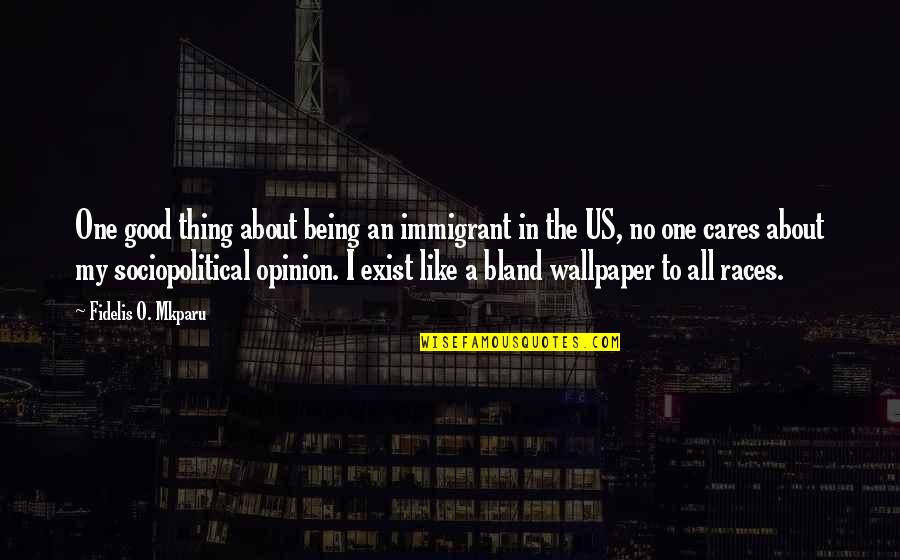 Political Humor Quotes By Fidelis O. Mkparu: One good thing about being an immigrant in