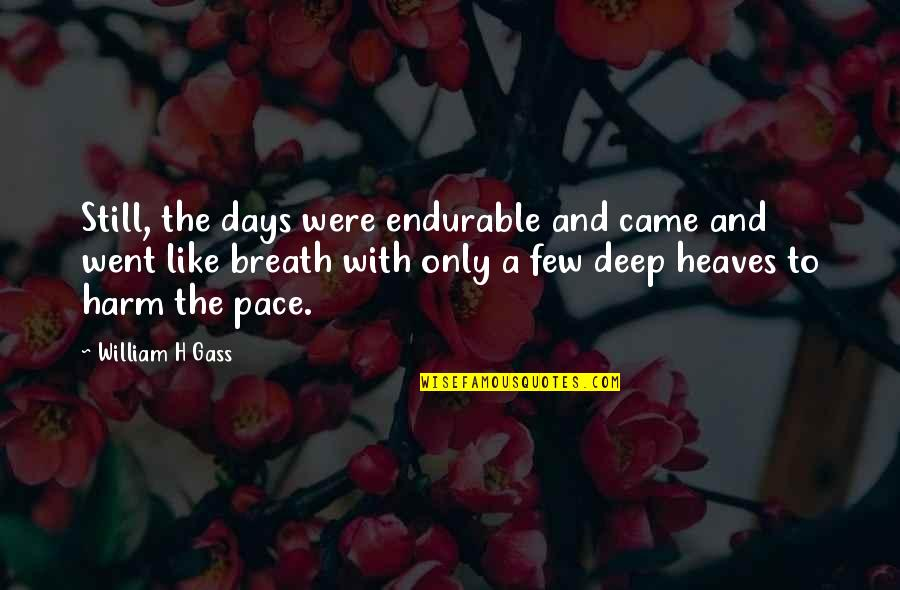 Polly Adler Quotes By William H Gass: Still, the days were endurable and came and