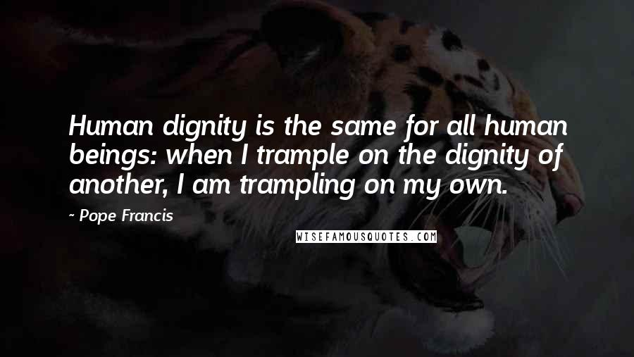 Pope Francis quotes: Human dignity is the same for all human beings: when I trample on the dignity of another, I am trampling on my own.