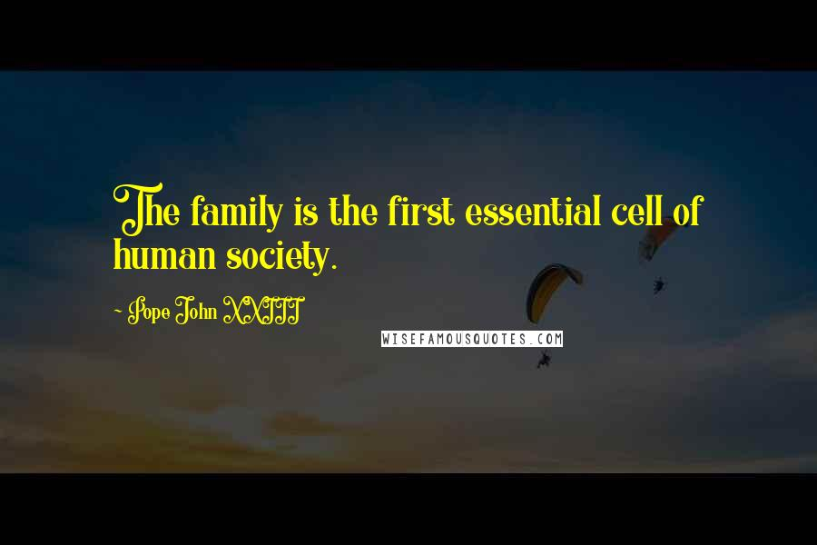 Pope John XXIII quotes: The family is the first essential cell of human society.