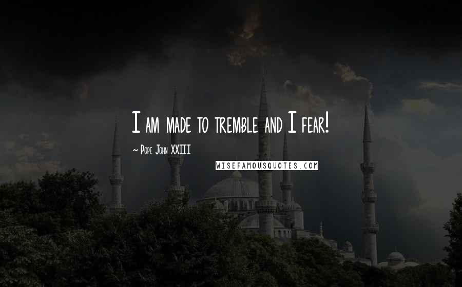 Pope John XXIII quotes: I am made to tremble and I fear!