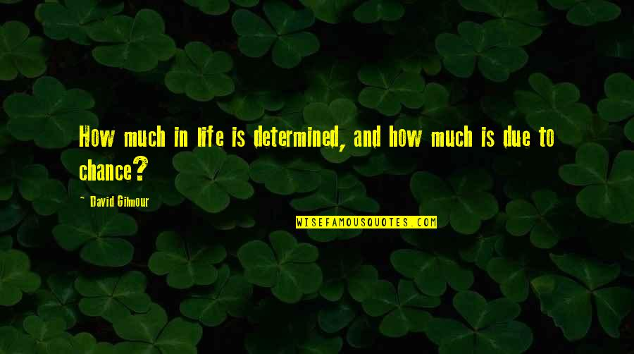Popular Proverbs Quotes By David Gilmour: How much in life is determined, and how
