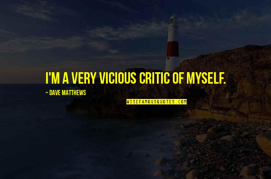 Positive Intimidation Quotes By Dave Matthews: I'm a very vicious critic of myself.