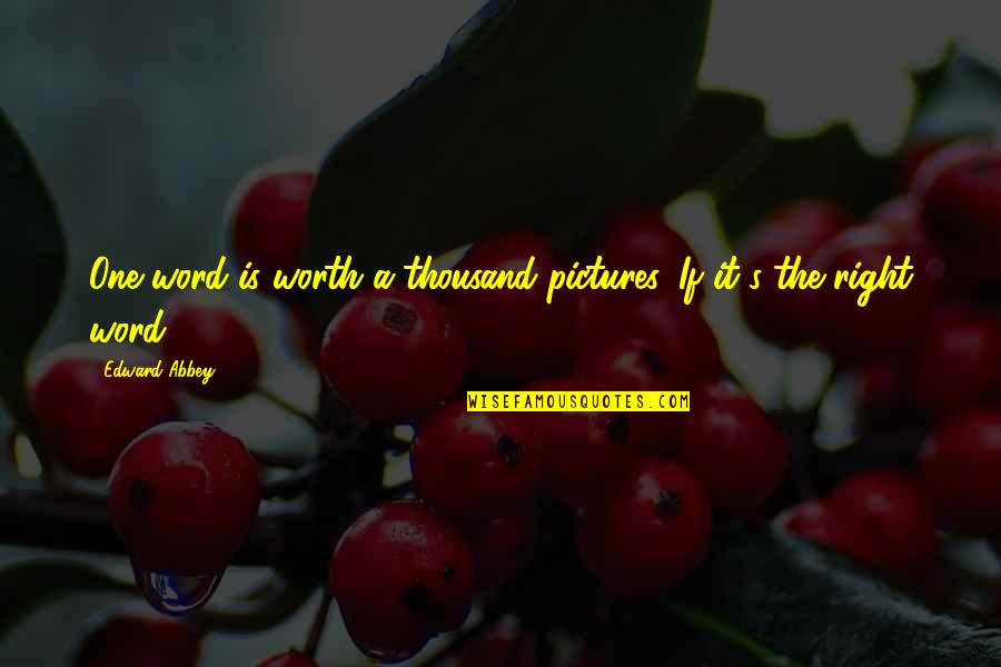 Positive Labour Quotes By Edward Abbey: One word is worth a thousand pictures. If