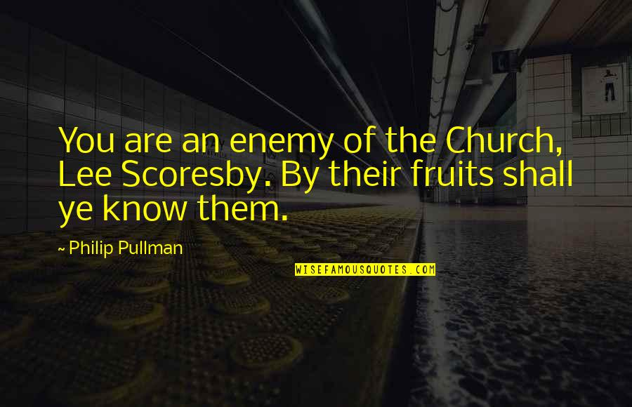 Positivity In The Bible Quotes By Philip Pullman: You are an enemy of the Church, Lee