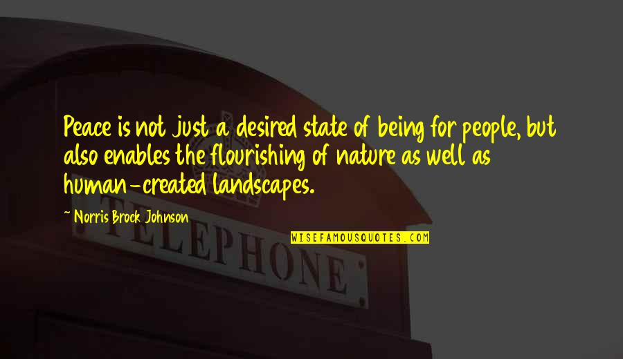 Possibilitly Quotes By Norris Brock Johnson: Peace is not just a desired state of