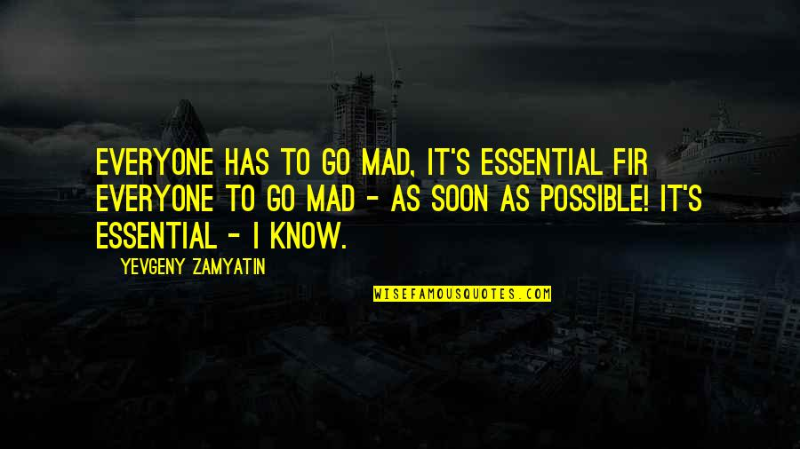 Possible's Quotes By Yevgeny Zamyatin: Everyone has to go mad, it's essential fir