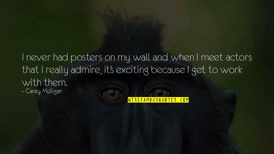 Posters On The Wall Quotes By Carey Mulligan: I never had posters on my wall and