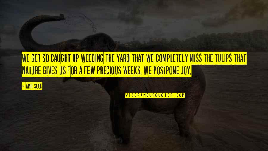 Postpone Quotes By Amit Sood: We get so caught up weeding the yard