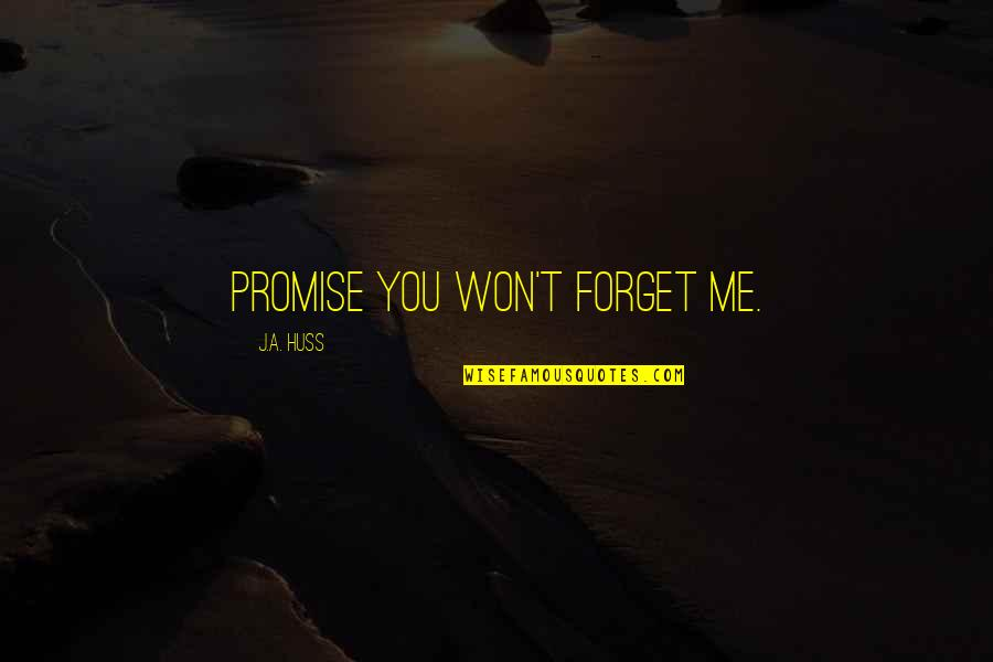 Postponing Quotes By J.A. Huss: Promise you won't forget me.