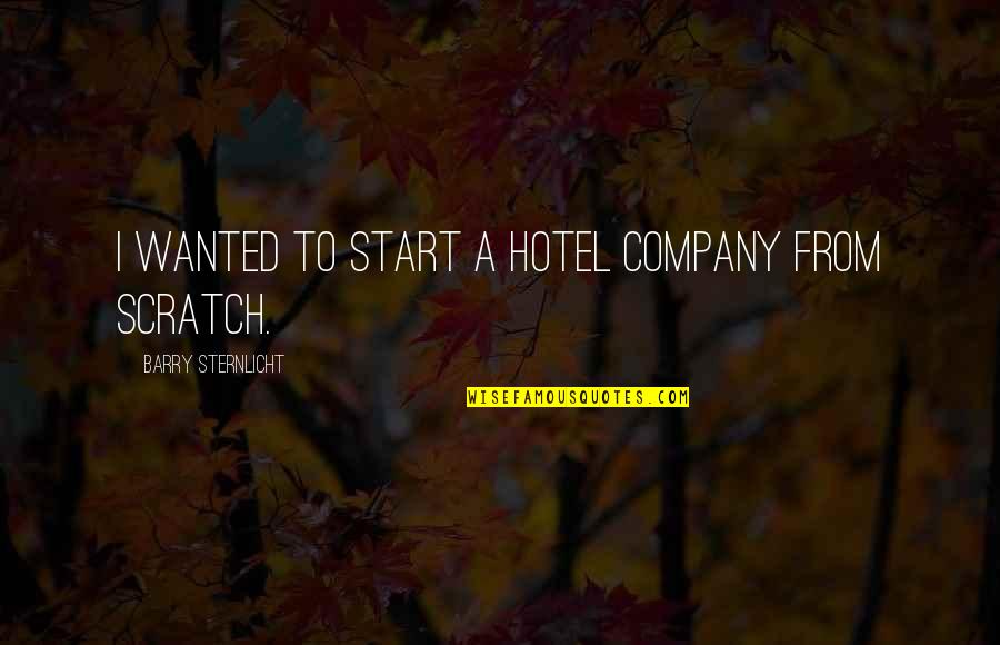 Potable Water Quotes By Barry Sternlicht: I wanted to start a hotel company from