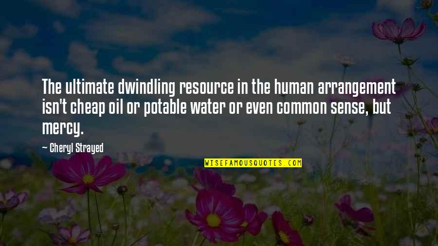 Potable Water Quotes By Cheryl Strayed: The ultimate dwindling resource in the human arrangement