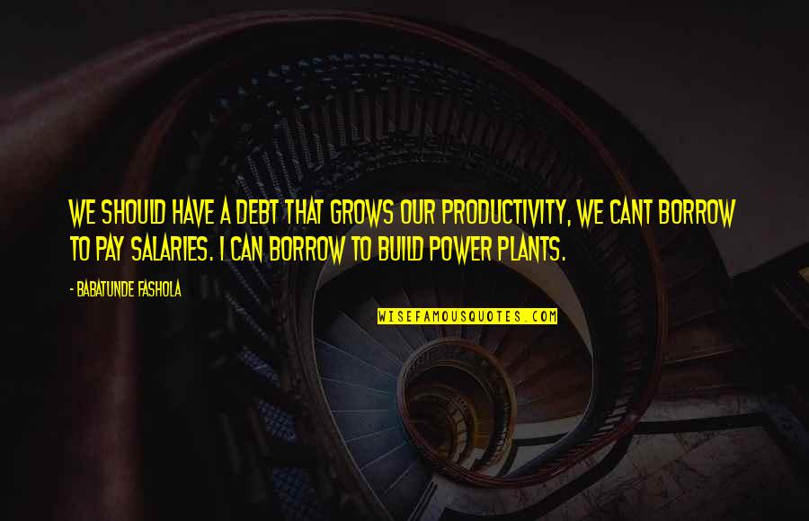 Power Plants Quotes By Babatunde Fashola: We should have a debt that grows our