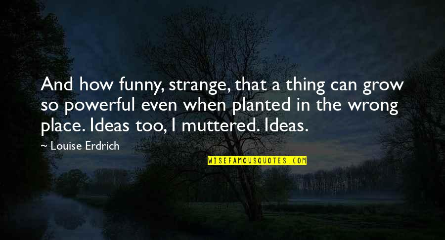 Powerful And Funny Quotes By Louise Erdrich: And how funny, strange, that a thing can