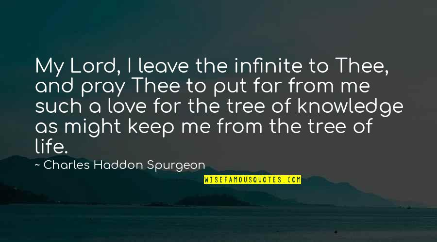 Pray For My Love Quotes By Charles Haddon Spurgeon: My Lord, I leave the infinite to Thee,
