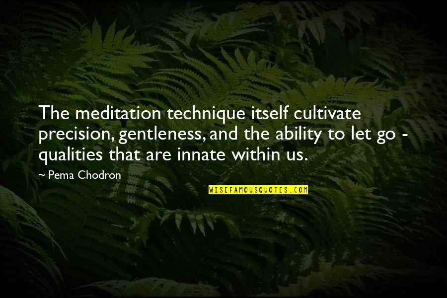 Precision Quotes By Pema Chodron: The meditation technique itself cultivate precision, gentleness, and