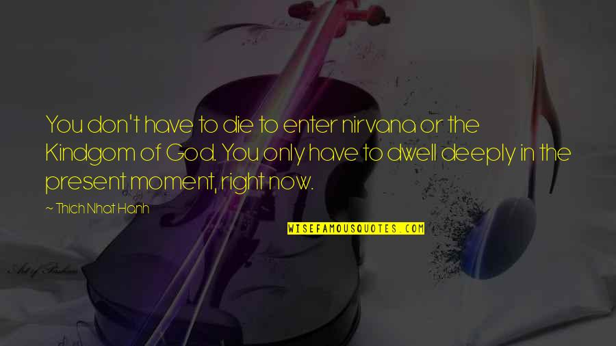 Present In The Moment Quotes By Thich Nhat Hanh: You don't have to die to enter nirvana
