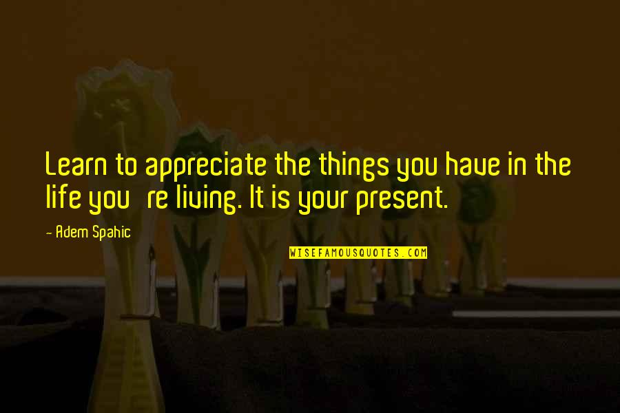 Present Life Quotes By Adem Spahic: Learn to appreciate the things you have in