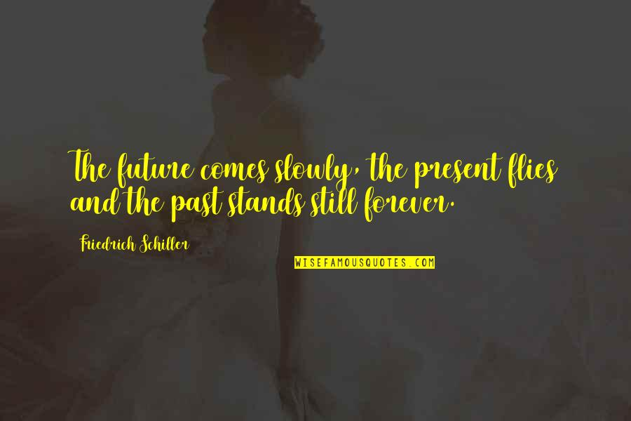 Present Vs Future Quotes By Friedrich Schiller: The future comes slowly, the present flies and