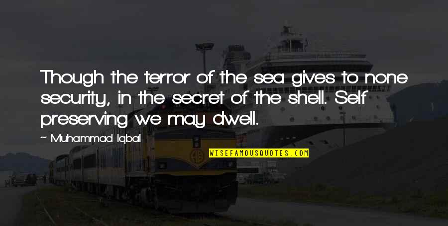 Preserving Quotes By Muhammad Iqbal: Though the terror of the sea gives to