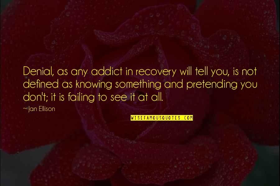 Pretending To Be Something You Re Not Quotes By Jan Ellison: Denial, as any addict in recovery will tell