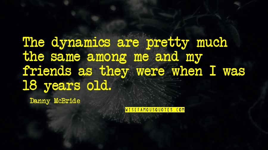 Pretty Best Friends Quotes By Danny McBride: The dynamics are pretty much the same among