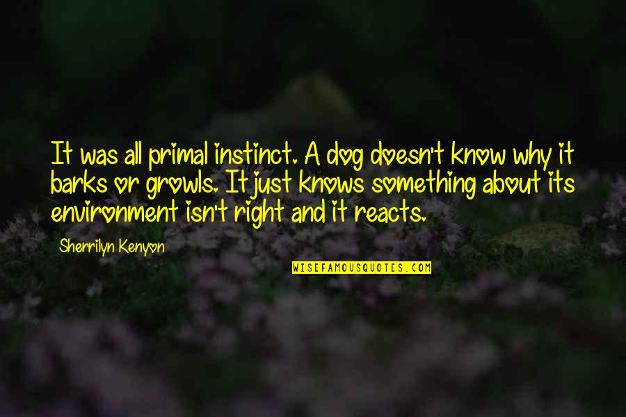 Primal Quotes By Sherrilyn Kenyon: It was all primal instinct. A dog doesn't