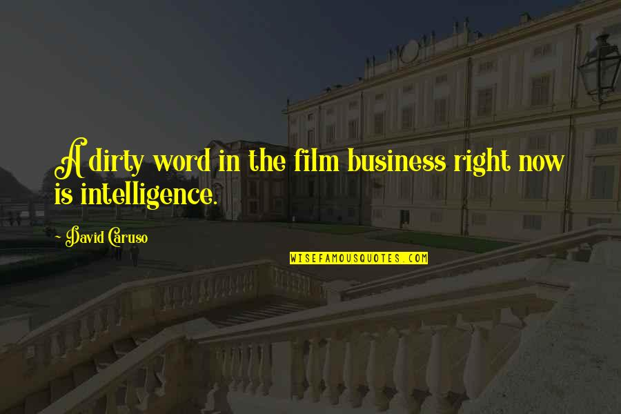 Primerica Life Insurance Company Quotes By David Caruso: A dirty word in the film business right