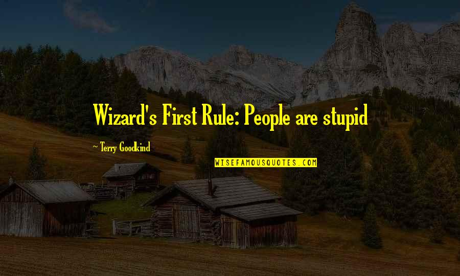 Princess Birthday Party Quotes By Terry Goodkind: Wizard's First Rule: People are stupid