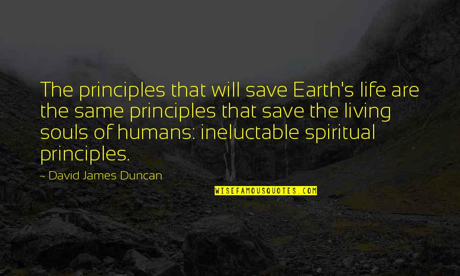 Principles Of Life Quotes By David James Duncan: The principles that will save Earth's life are