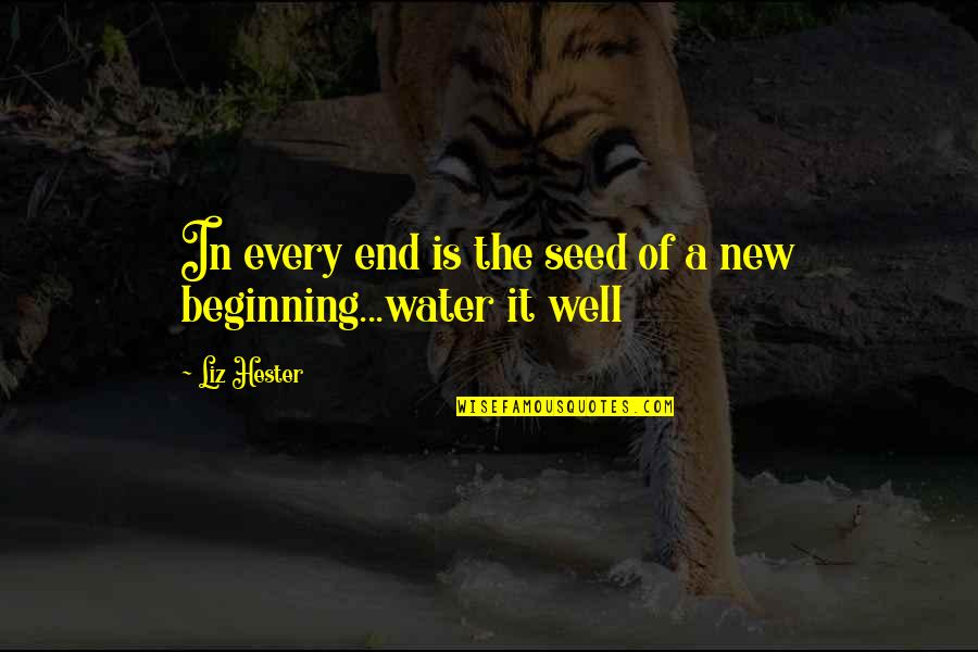Principles Of Life Quotes By Liz Hester: In every end is the seed of a