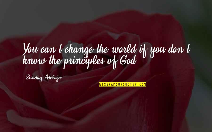 Principles Of Life Quotes By Sunday Adelaja: You can't change the world if you don't
