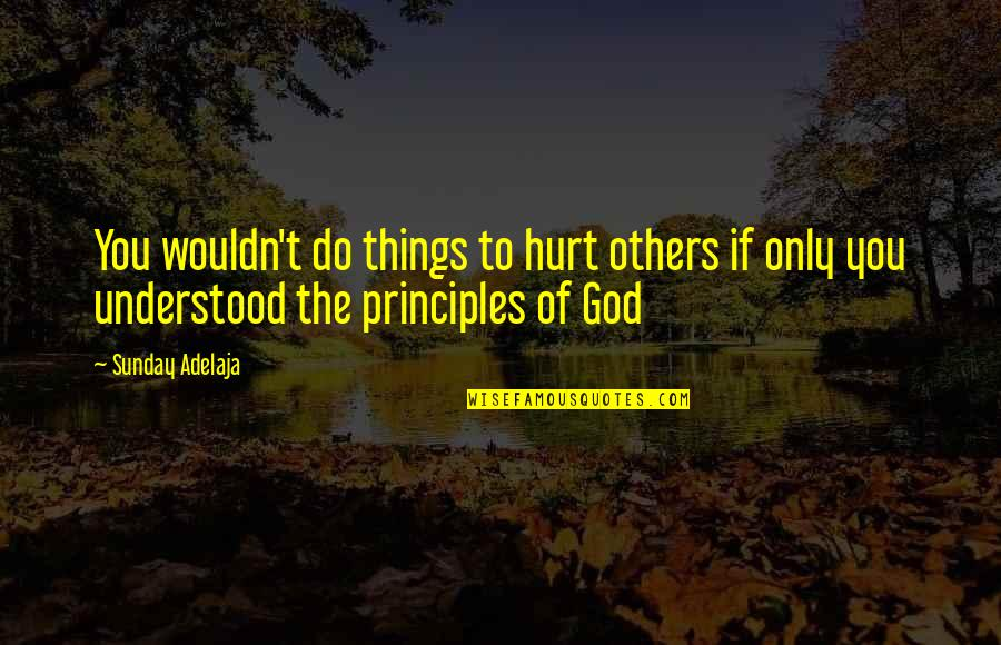 Principles Of Life Quotes By Sunday Adelaja: You wouldn't do things to hurt others if